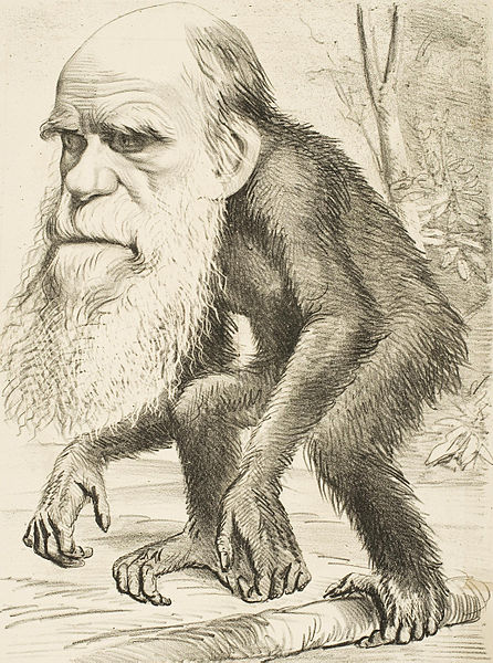 1871 satirical image depicting Charles Darwin as an ape.