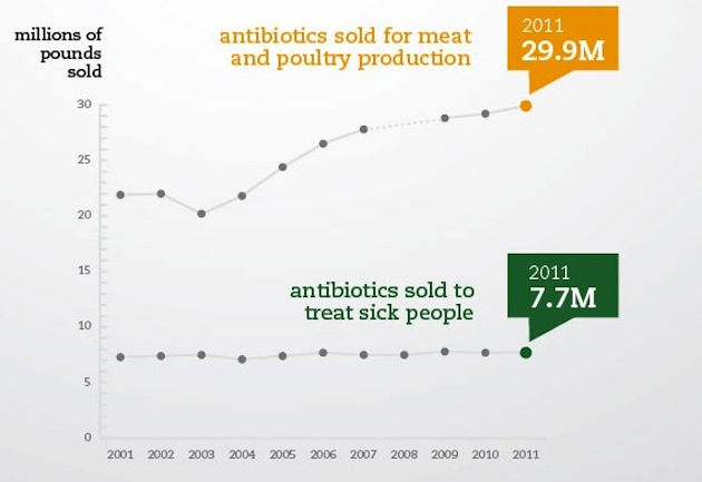 The Meat Industry Now Consumes Four-Fifths of All Antibiotics