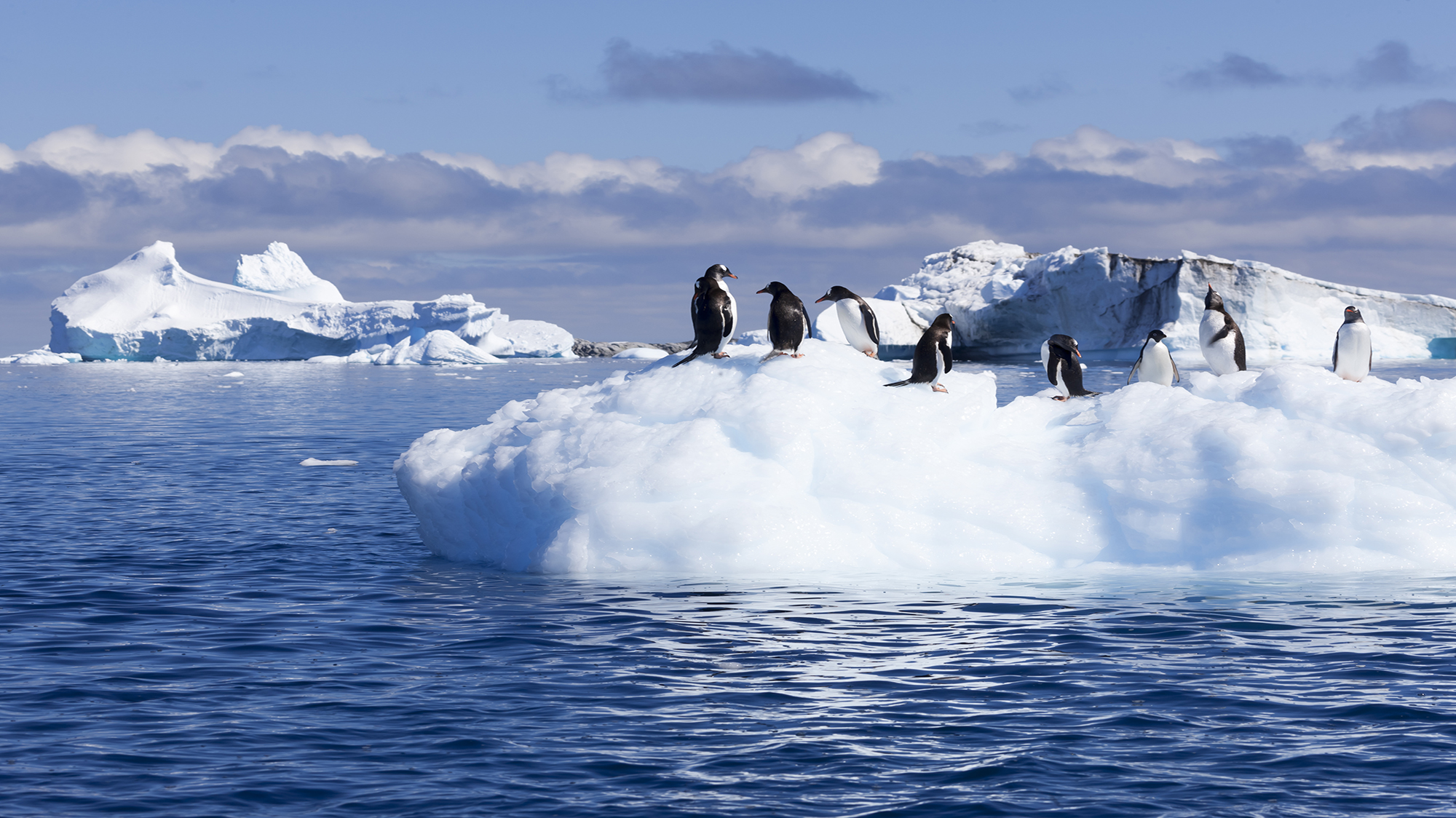 global warming in antartica That really is hilarious – global warming scientists looking for evidence to support their theory in antartica, getting stuck in the ice and then the rescuers getting stuck as well.