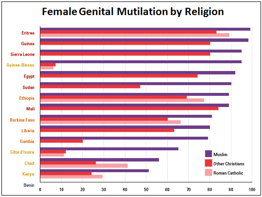 female genital mutilation in africa essay Free female genital mutilation female genital mutilation in africa - in this essay i will be discussing whether female filmmakers in.