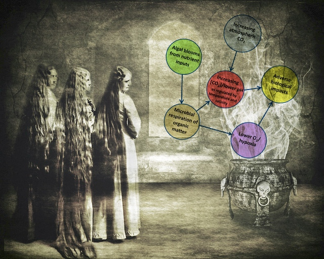 The bubbling brew of CO2 synergies: Witches: ~Brenda-Starr~. Diagram: Sunda and Cai, ES&T doi: 10.1021/es300626f. Mashup: Julia Whitty