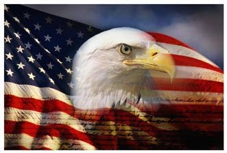 bald_eagle_american_flag.jpg