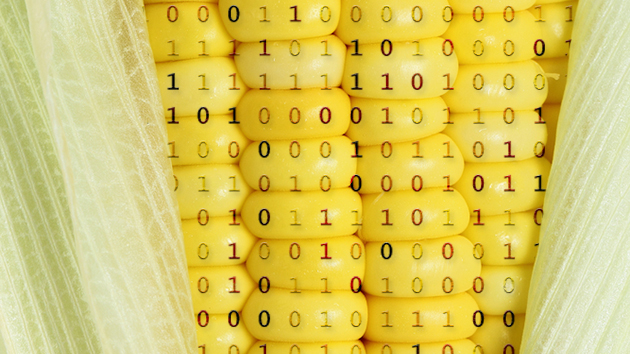 Monsanto is using big data to take over the world