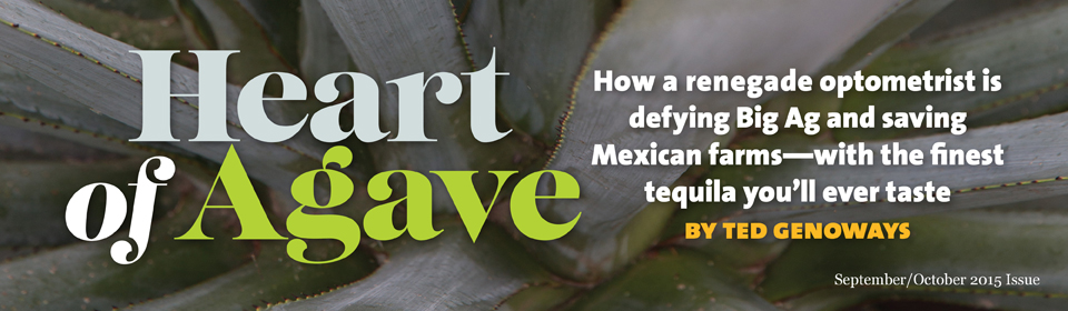Heart of Agave