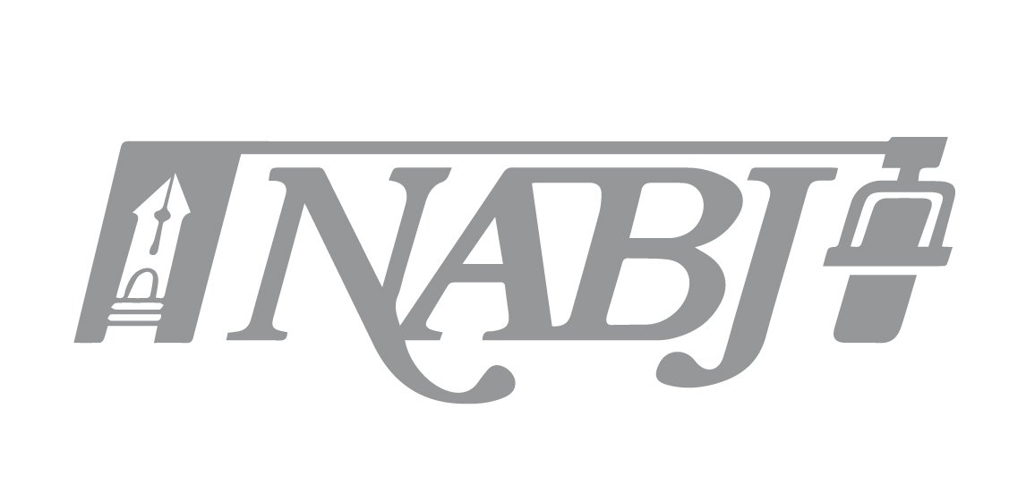 National Association of Black Journalists Salute to Excellence Award