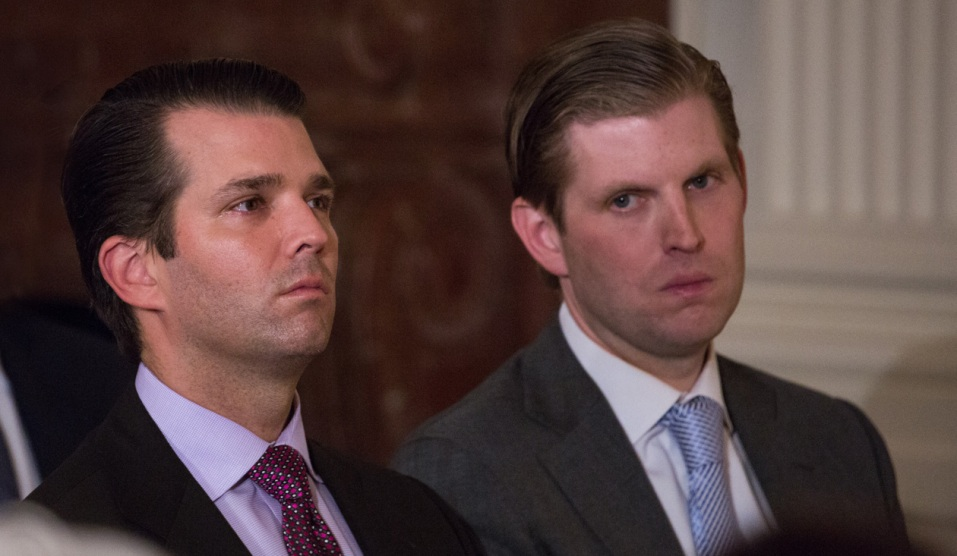 Donald Trump Jr. Met With Russian Lawyer In Hopes of Dirt on Hillary ...
