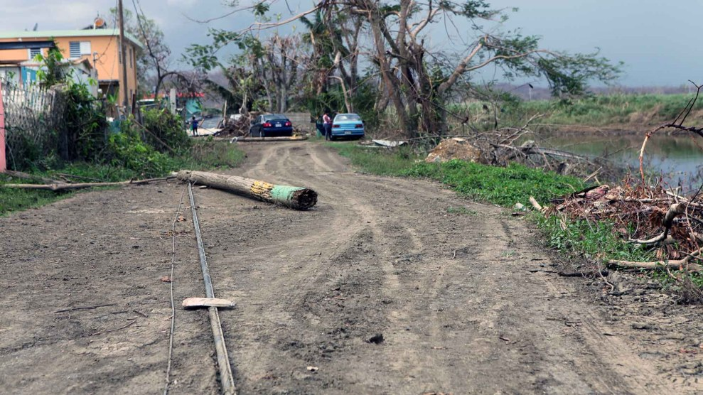 After The Hurricane A Puerto Rican Town Deals With Wastewater Dead