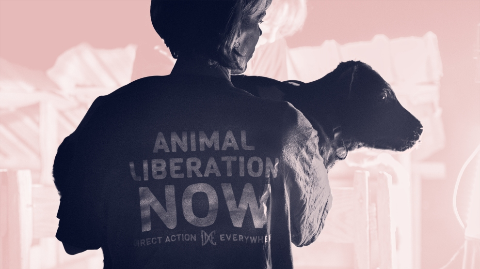 Inside the Bold New Animal Liberation Movement: No Masks, No Regrets, All the Risk