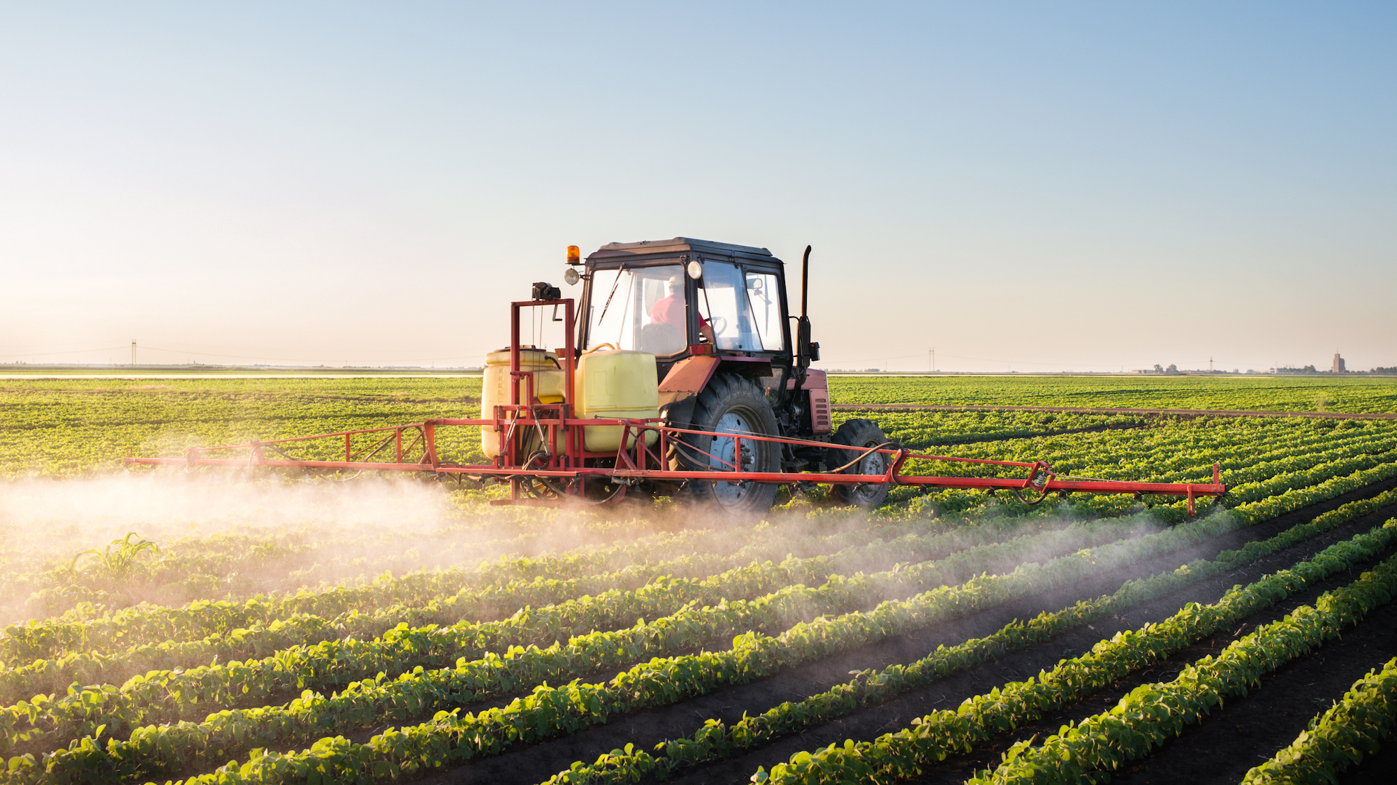 Monsanto Slashes Cost Of Using Controversial Chemical