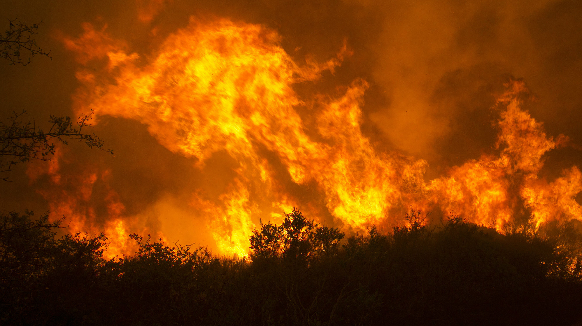 A Century of Fire Suppression Is Why California Is in Flames