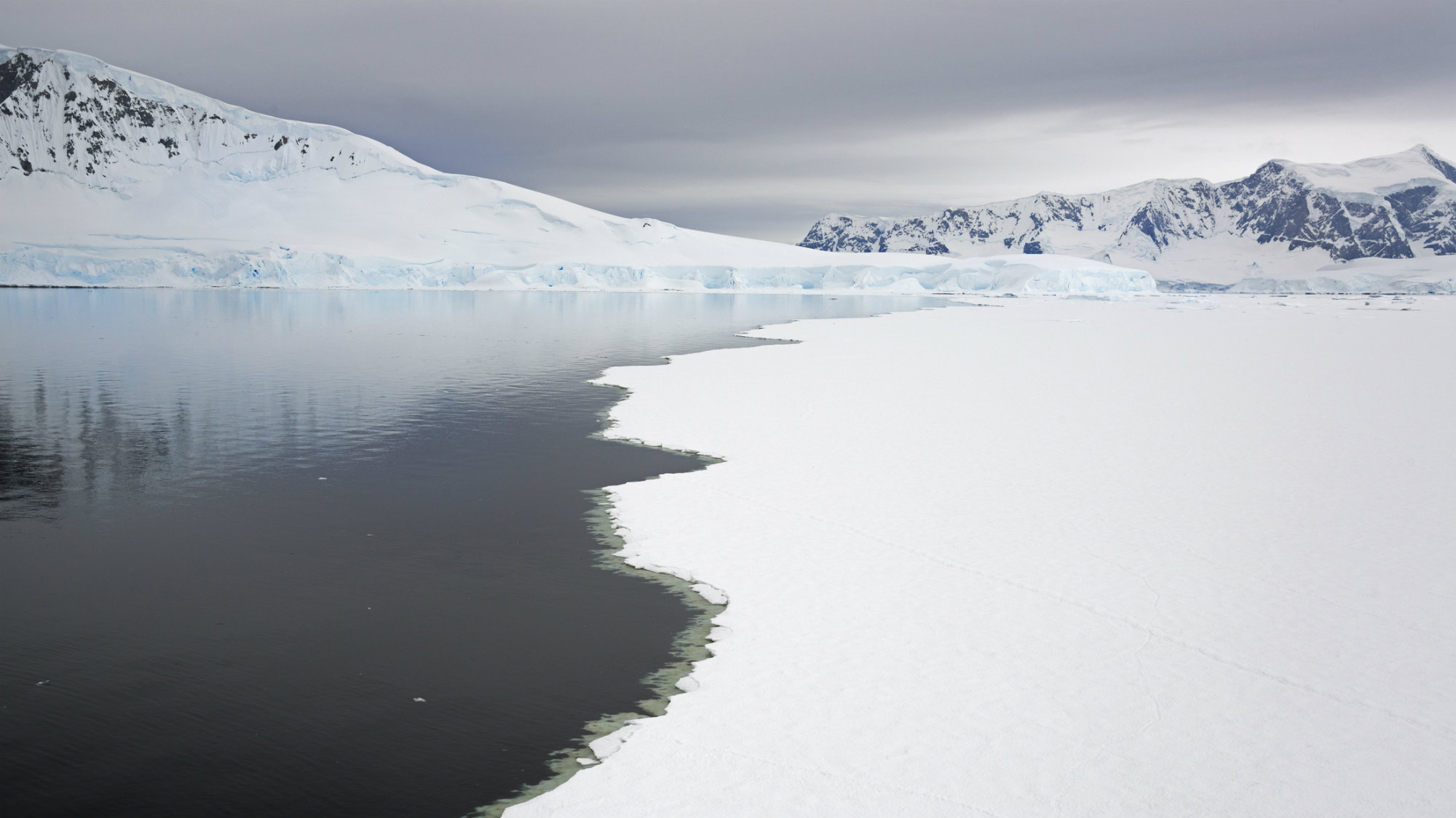 The speed of melting ice in Antarctica has grown to record levels