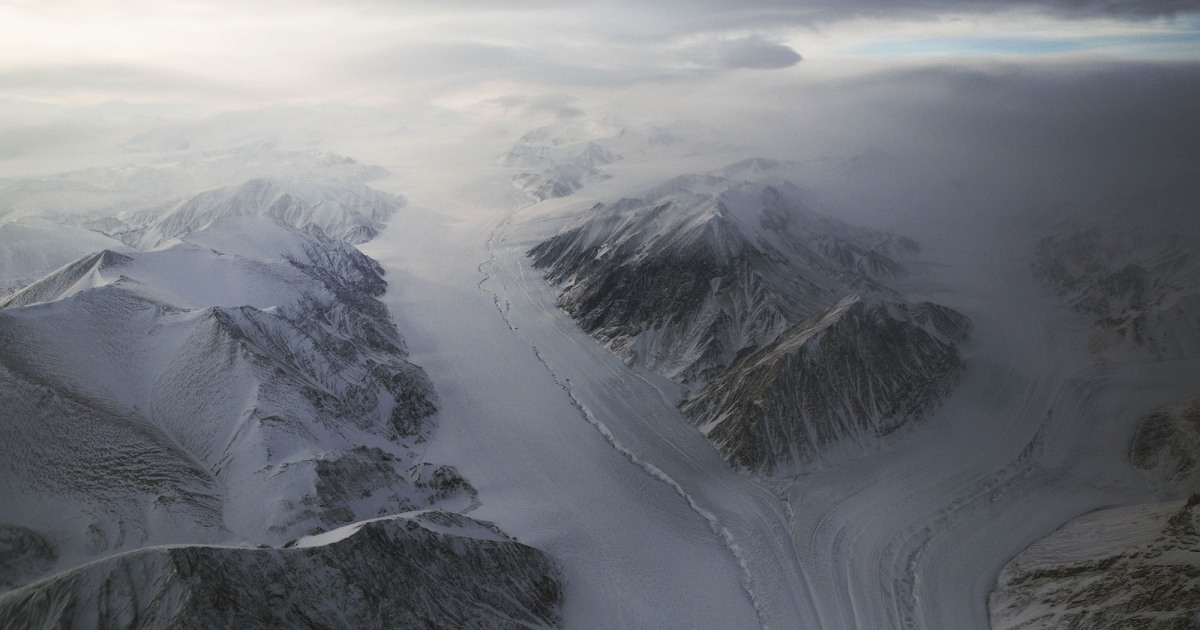 You Can Bury It for 40,000 Years, but Don't Mess With Arctic Life