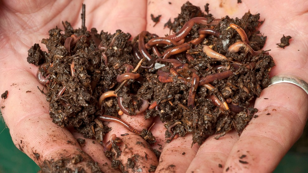 You Should Be Composting In Your Apartment Here S How Mother Jones