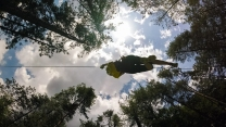 view of ziplining through treetops