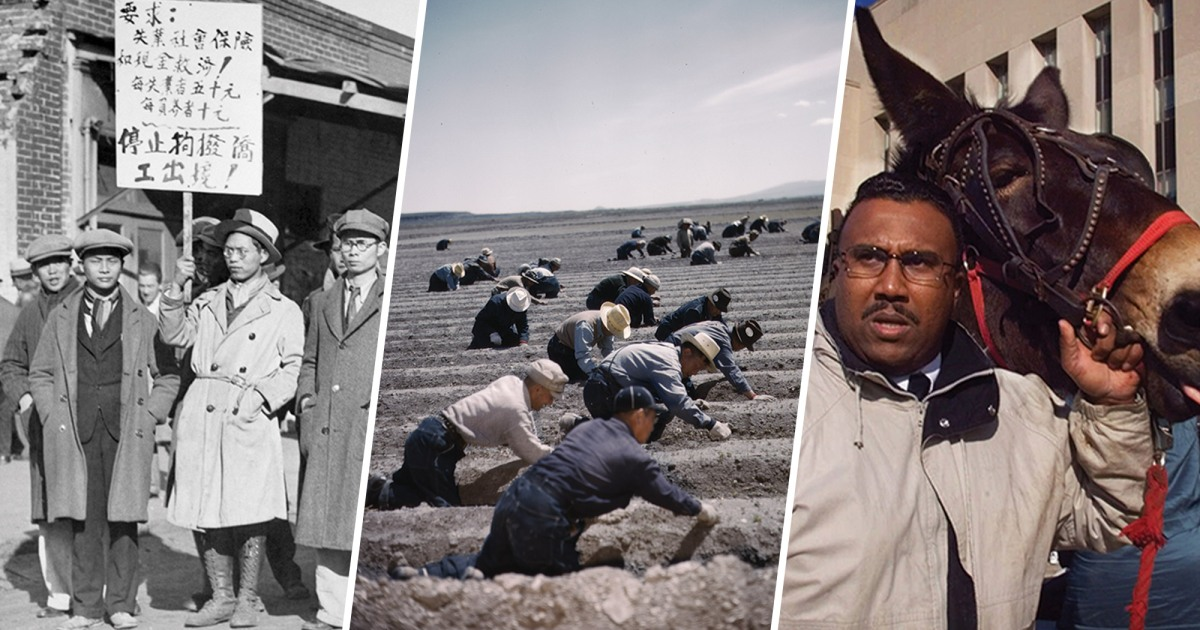 A brief history of the US government appropriating farmland from people of color