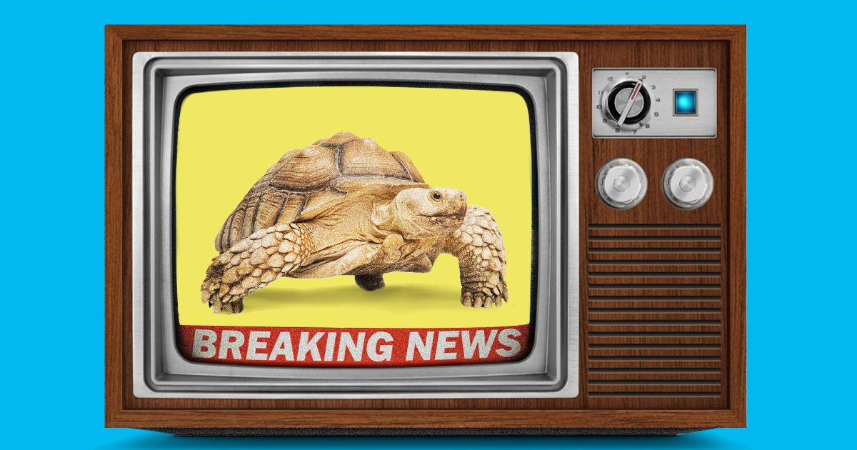 Slow News Is Good News 1