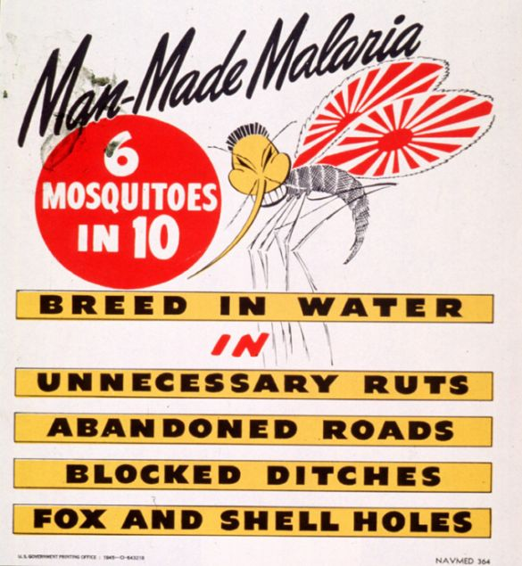 malaria and ddt essay Ddt and malaria control essay 1185 words | 5 pages active in repelling malaria carrying mosquitoes for up to a year (maykuth 2000) furthermore, applied ddt is long.