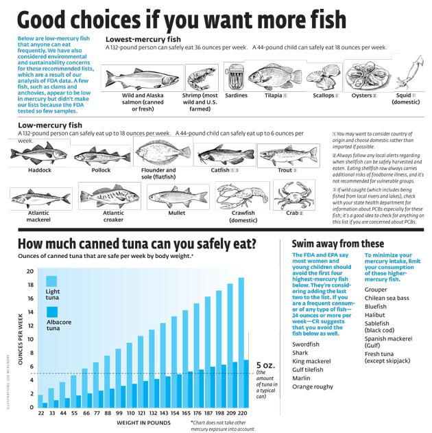 should pregnant women eat zero tuna  mother jones