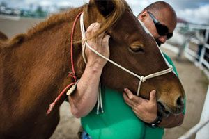 wild horse divorced singles personals Browse female personals and singles in missouri free serving the online dating community since 1996.
