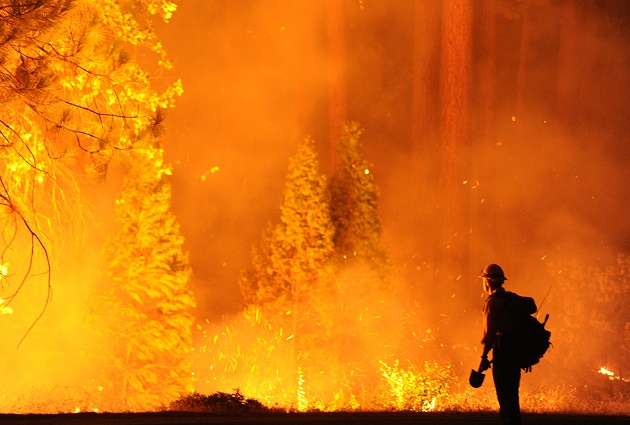A firefighter in Groveland, CA, eyes the Rim Fire warily.