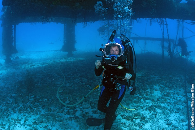 Sylvia Earle diving, TK location.
