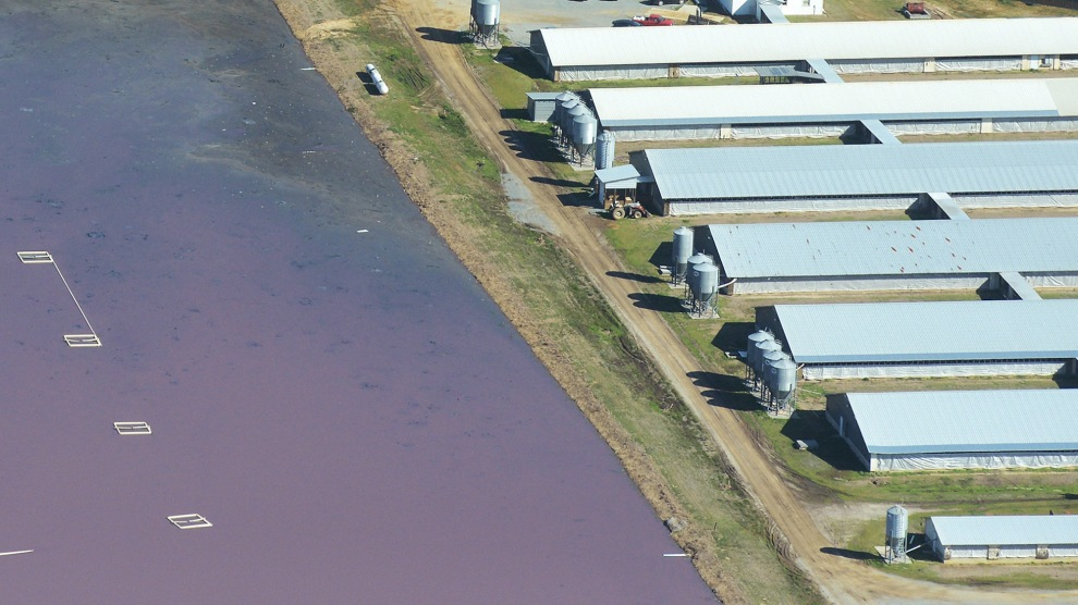 An Aerial View Of The Waste Lagoon Next To Hog Houses At Operation In North Carolinas Eastern Belt
