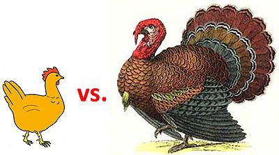 Chicken vs Turkey Is an Unfair Fight Mother Jones