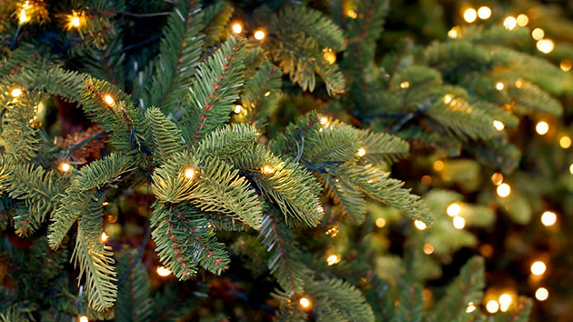 6ec62cfbede Should I Buy a Fake Christmas Tree or a Real One  – Mother Jones
