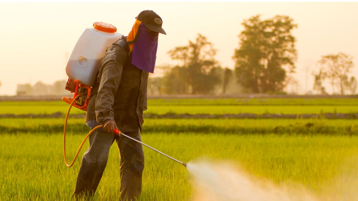the causes and environmental problems of extensive use of pesticides by farmers