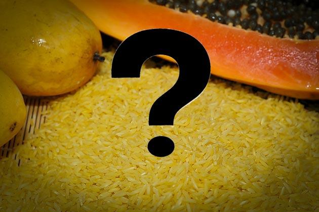 5 Surprising Genetically Modified Foods – Mother Jones