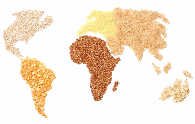 CHARTS: World's GMO Crop Fields Could Cover the US 1.5 Times Over