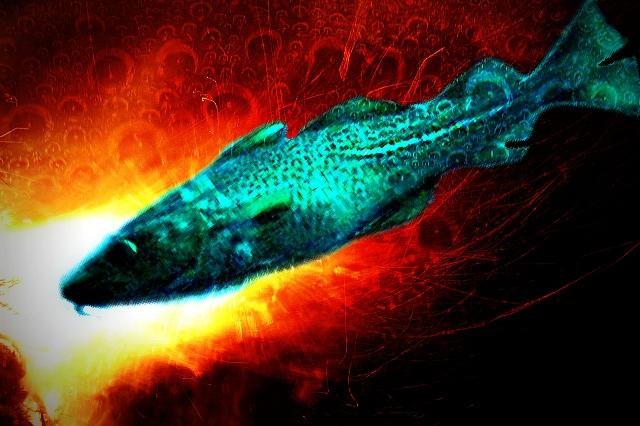 Cod: Derek Keats. Flame: designshard. Bubbles: Velo Steve. All via Flickr.
