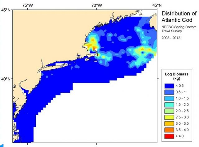 NOAA | NEFSC Ecosystem Assessment Program