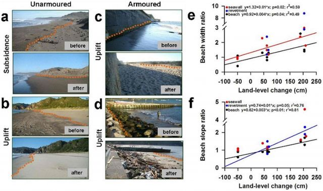 Photos of study sites taken before and after the 2010 Chile earthquake: Eduardo Jaramillo, et al. PLoS ONE. DOI:info:doi/10.1371/journal.pone.0035348.g002