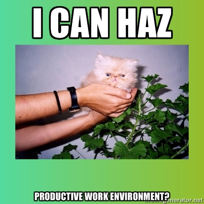 yes you can haz. /Flickr