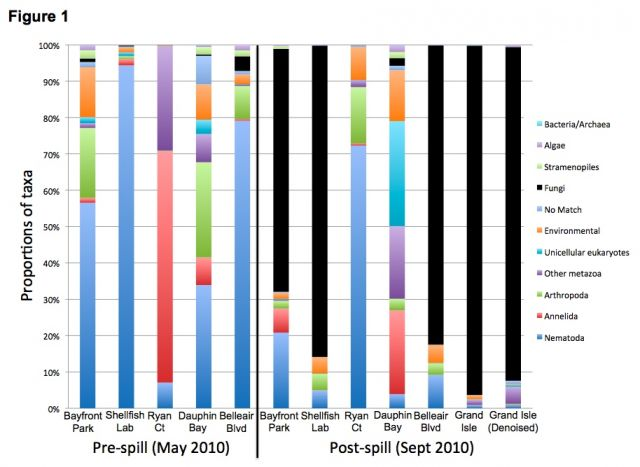 Micorbial communities in different beach communities pre and post BP's Deepwater Horizon catastrophe: Holly M. Bik, et al. PLoS ONE. doi: