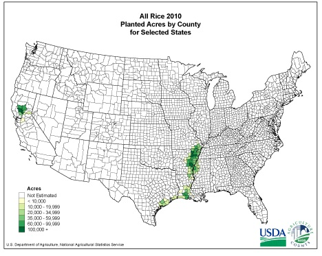 US rice production.  USDA