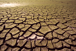 071101-drought-dreamstime-hf.jpg