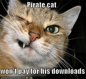 mojo-photo-piratecat.jpg