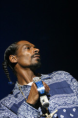 mojo-photo-snoop.jpg