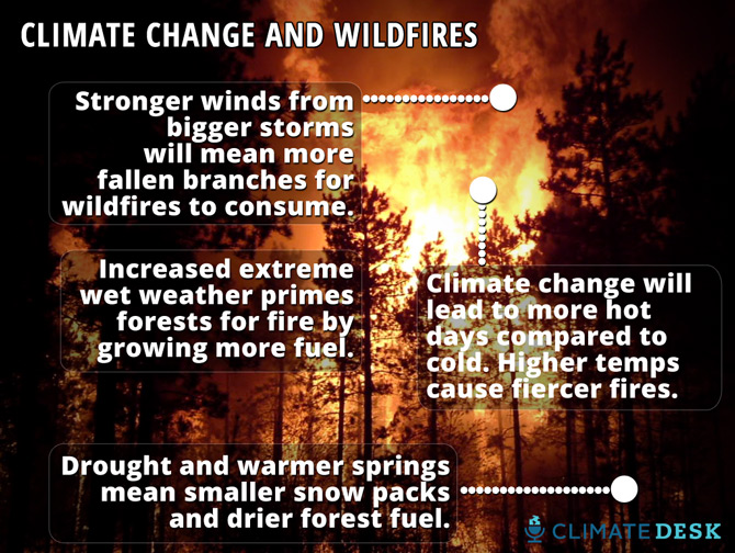 """The New Abnormal"": Wildfires And Climate Change"